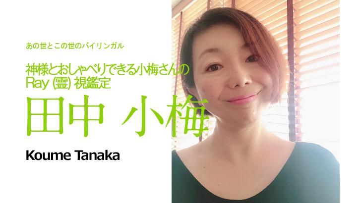 【キャンセル待ち受付中!】◆個人セッション◆田中小梅 2019年1月13日~15日開催